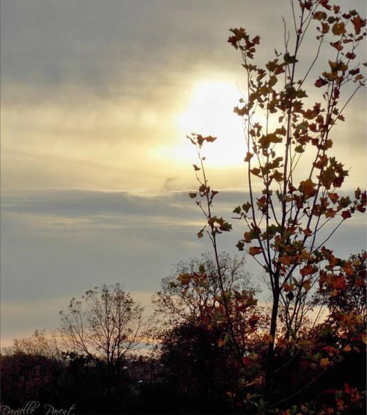 Photograph - Atmospheric Autumn Sunset 3 by Danielle  Parent
