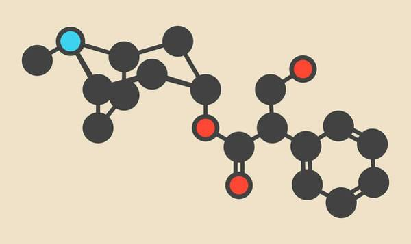 Neurotransmitter Wall Art - Photograph - Atropine Drug Molecule by Molekuul