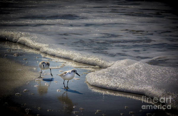 Wade Photograph - Attack Of The Sea Foam by Marvin Spates