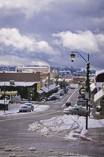 Photograph - Auburn In The Snow by Sherri Meyer