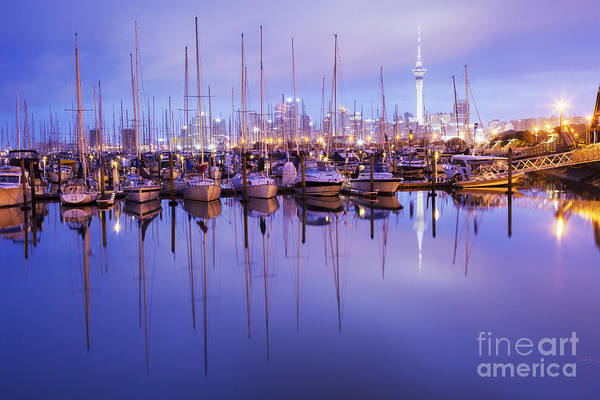 Auckland Photograph - Auckland Westhaven Marina by Colin and Linda McKie