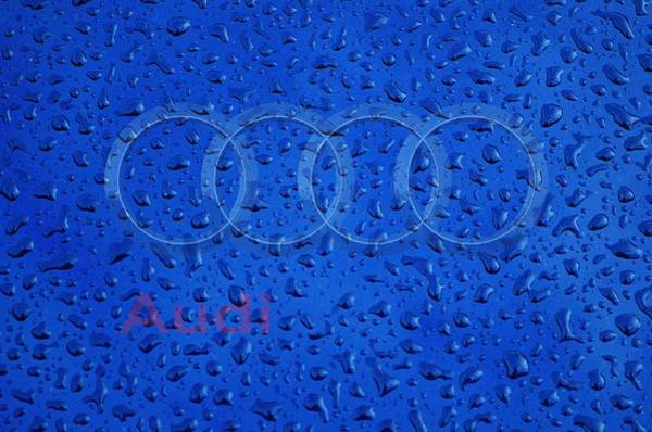 Photograph - Audi Rainy Window Visual Art by Movie Poster Prints
