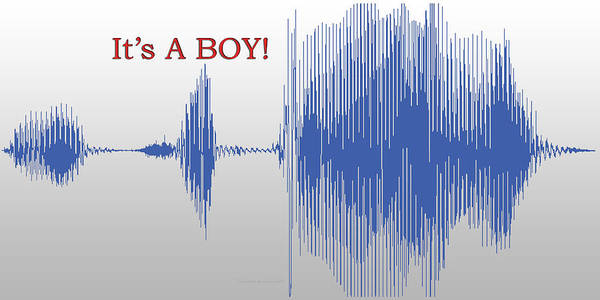 Wall Art - Photograph - Audio Art It's A Boy by Thomas Woolworth
