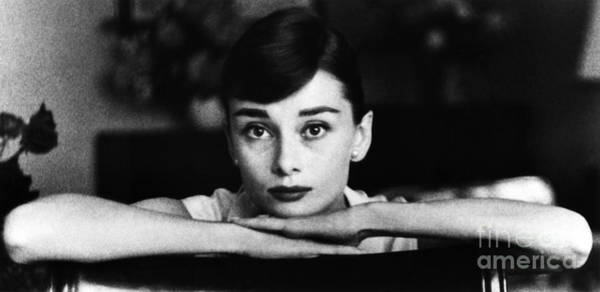 Photograph - Audrey Hepburn by George Daniell