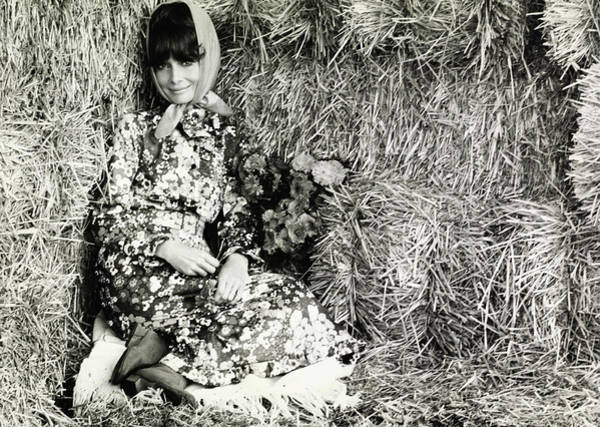 Agriculture Photograph - Audrey Hepburn Sitting In Hay Wearing Givenchy by Henry Clarke