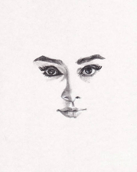 Actor Drawing - Audrey by Lee Ann Shepard