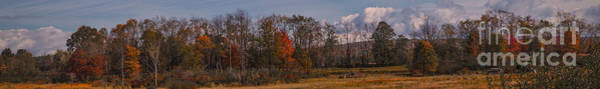 Photograph - Audubon Panorama 10.14 by Kathryn Strick