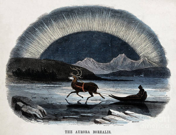 Photograph - Aurora Borealis And Reindeer-drawn Sled by Wellcome Images