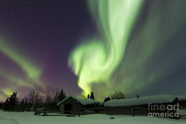 Photograph - Aurora Borealis Over A Log Cabin by Joseph Bradley