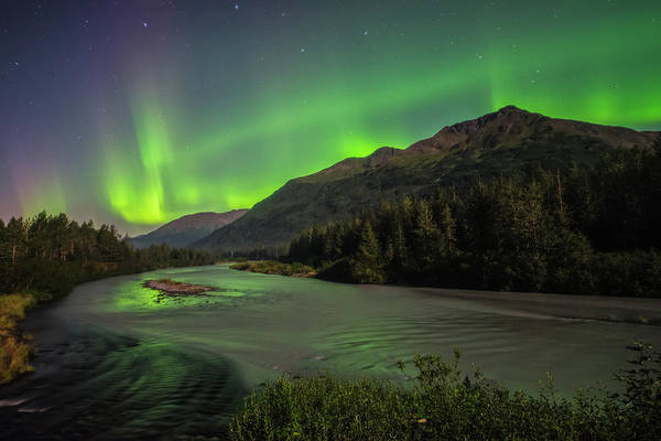 Aurora Borealis Over Portage Creek Art Print