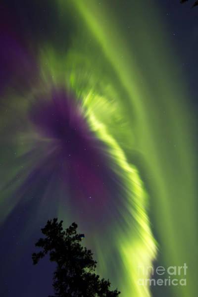 Photograph - Aurora Borealis, Whitehorse, Yukon by Joseph Bradley