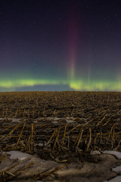 Spikes Photograph - Aurora Spike  by Aaron J Groen