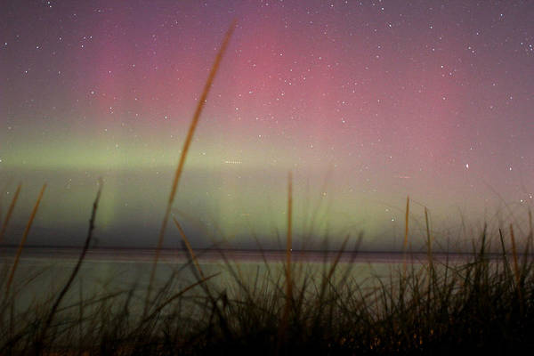 Wall Art - Photograph - Auroras Over Lake Michigan by Jackie Novak