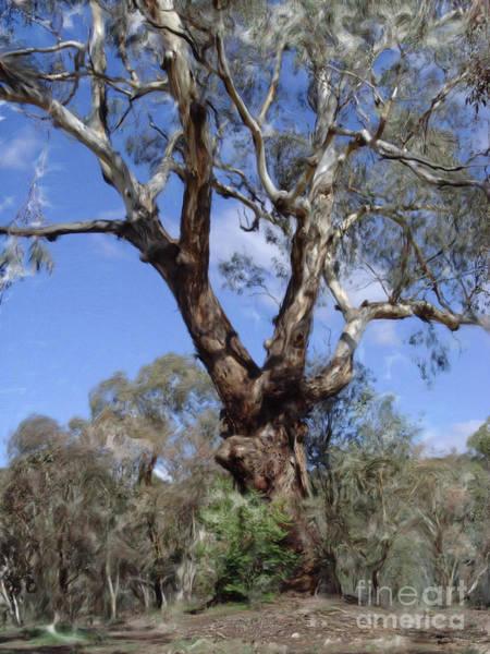 Digital Art - Australian Native Tree 11 by Russell Kightley