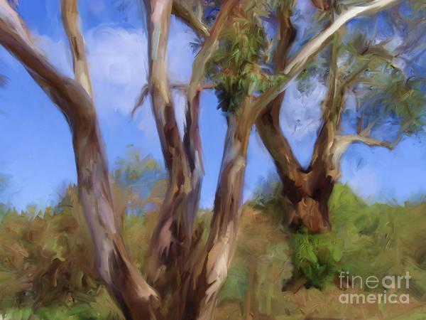 Digital Art - Australian Native Tree 13 by Russell Kightley