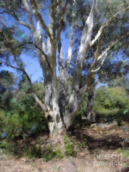 Digital Art - Australian Native Tree 5 by Russell Kightley