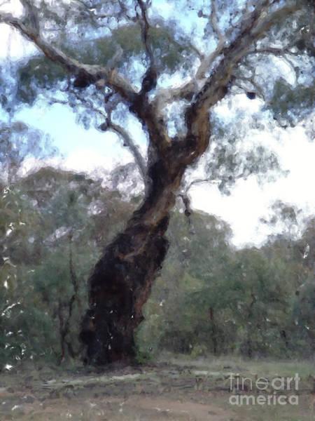 Digital Art - Australian Native Tree 9 by Russell Kightley
