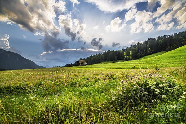 Wall Art - Photograph - Austrian Fields by Yuri San