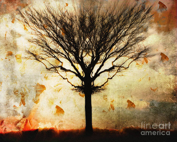 Autum Wind Art Print