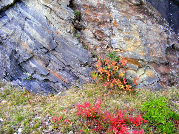 Photograph - Autumn And Rocks by Duane McCullough