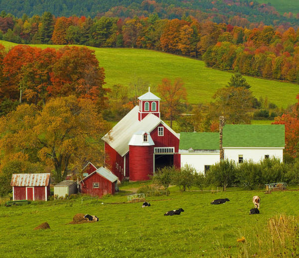 Photograph - Autumn At Bogie Mountain Dairy Farm by John Vose