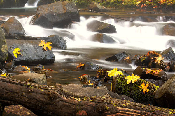 Photograph - Autumn At Bridal Veil by Jon Ares