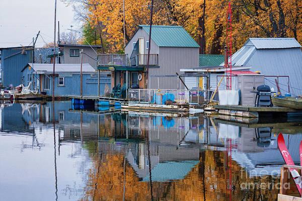 Photograph - Autumn At Latsch Island II by Kari Yearous