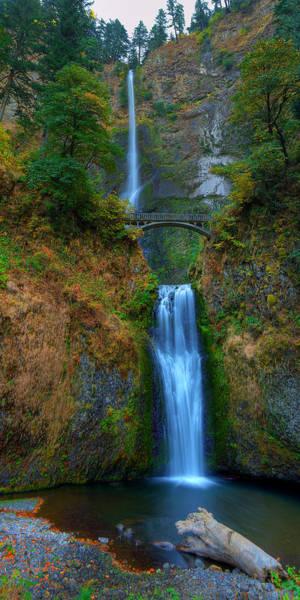 Wall Art - Photograph - Autumn At Multnomah Falls by Dan Mihai