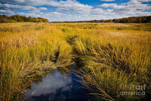 Photograph - Autumn At Quivet Creek by Susan Cole Kelly