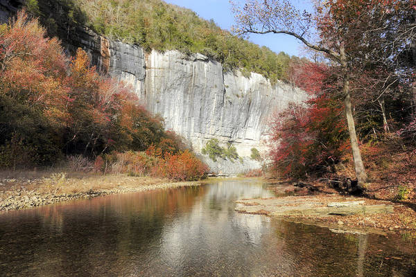 Photograph - Autumn At Roark Bluff - Arkansas - Buffalo River by Jason Politte