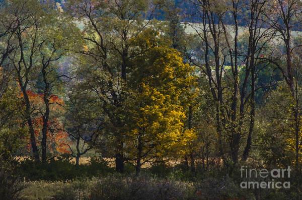 Photograph - Autumn At The Audubon Center 10.14 by Kathryn Strick