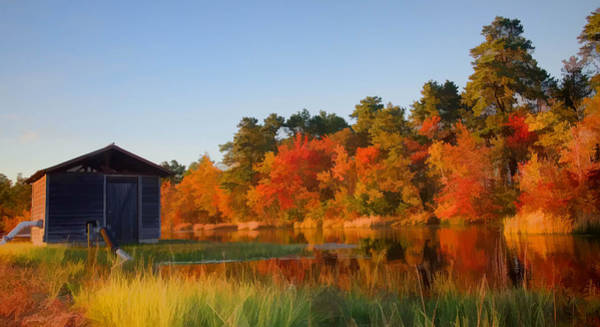 Photograph - Autumn At The Bog by Beth Sawickie