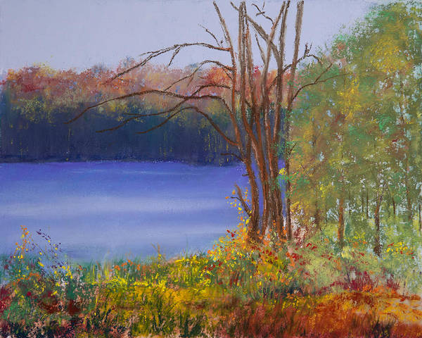 Wall Art - Painting - An Autumn Day At Cary Lake by David Patterson
