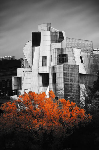 For Her Photograph - autumn at the Weisman by Matthew Blum