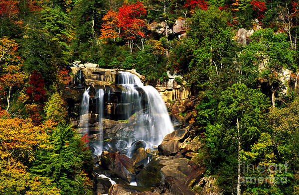 Wall Art - Photograph - Autumn At Whitewater Falls by Paul W Faust -  Impressions of Light