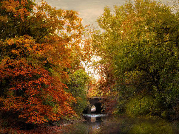 Photograph - Autumn Attraction by Jessica Jenney