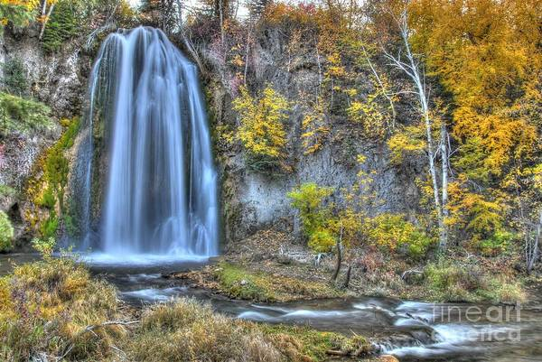 Photograph - Autumn Bath Of Beauty by Anthony Wilkening