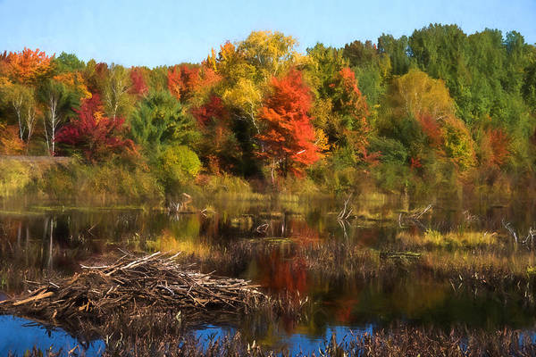 Wall Art - Digital Art - Autumn Beaver Pond Reflections by Georgia Mizuleva