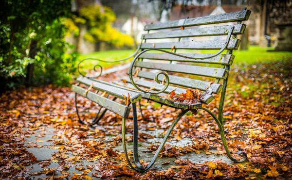 Photograph - Autumn Bench by Gary Gillette