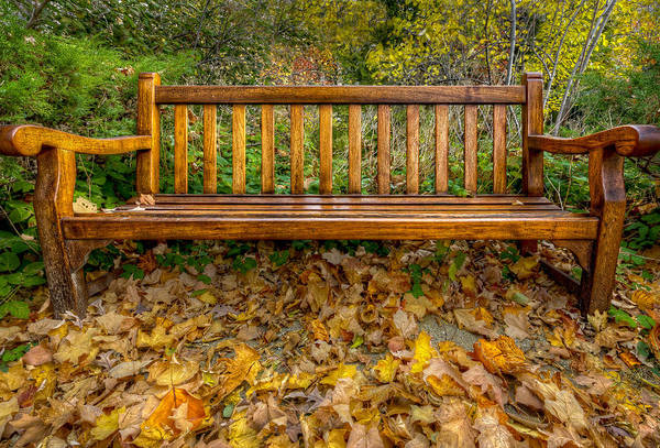 Photograph - Autumn Bench by Peter Lakomy