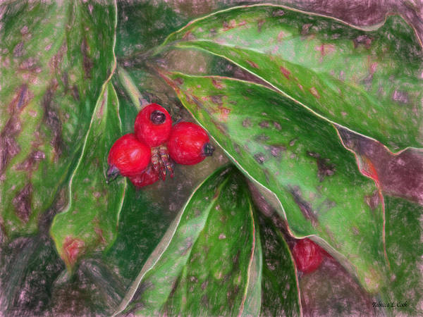 Photograph - Autumn Berries by Bellesouth Studio