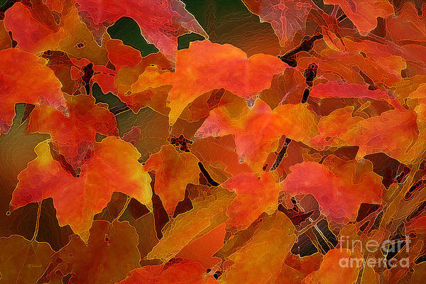 Digital Art - Autumn Blaze by E B Schmidt