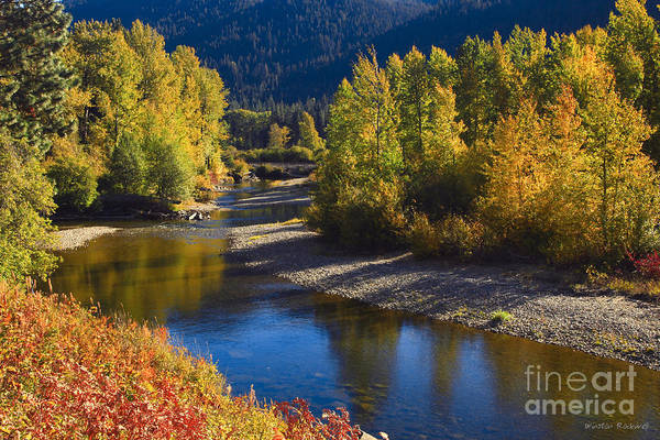 Wall Art - Photograph - Autumn Blaze by Winston Rockwell