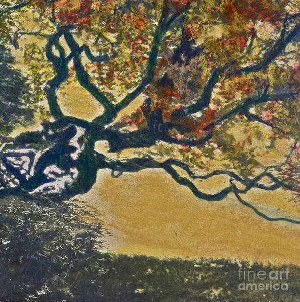 European Vacation Mixed Media - Autumn Bonsai Tree - Lithograph by Deborah Talbot - Kostisin
