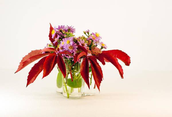 Orpine Photograph - Autumn Bouquet by Torbjorn Swenelius