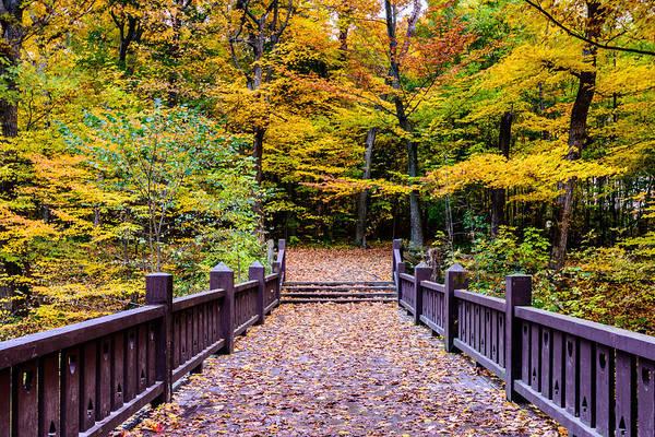 Photograph - Autumn Bridge by Randy Scherkenbach