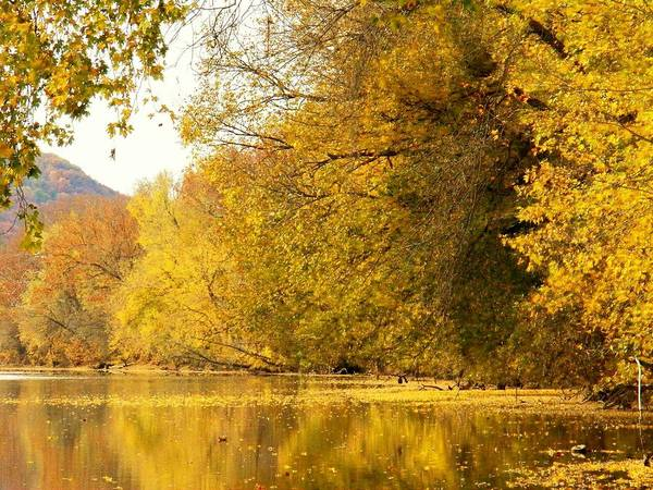Wall Art - Photograph - Autumn By The River by Joyce Kimble Smith