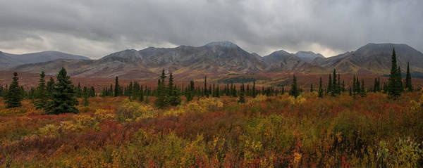 Photograph - Autumn Canvas by Darlene Bushue