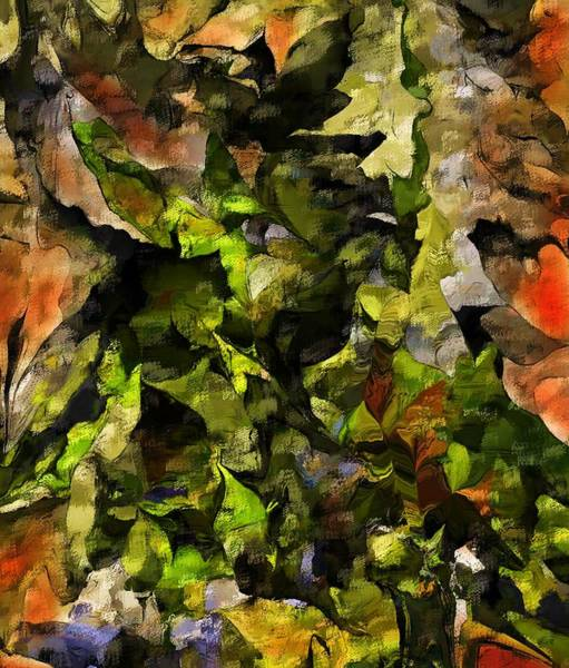 Wall Art - Digital Art - Autumn Color Abstract by David Lane