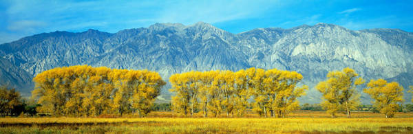 Escarpment Photograph - Autumn Color Along Highway 395, Sierra by Panoramic Images